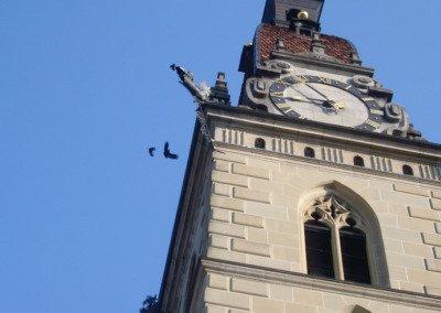 Dohlen Kirchturm